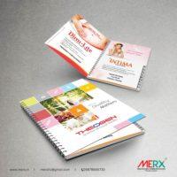 Visual Aid-05
